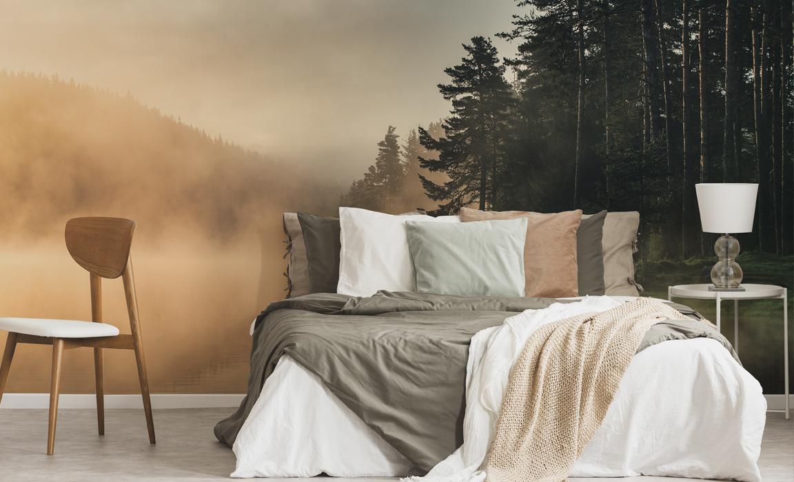 Fototapeta las we mgle jesienią